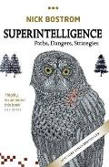 Superintelligence Paths Dangers Strategies
