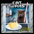 Cat Wars I sense a disturbance near the cheese