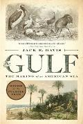 Gulf The Making of An American Sea